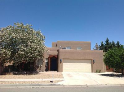 Albuquerque Single Family Home For Sale: 6412 Little Joe Place NW