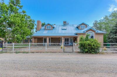 Los Ranchos Single Family Home For Sale: 333 Rancho Road NW