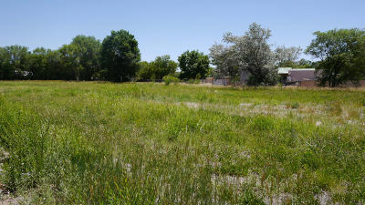 Albuquerque Residential Lots & Land For Sale: Camino Del Prado West Lot NW