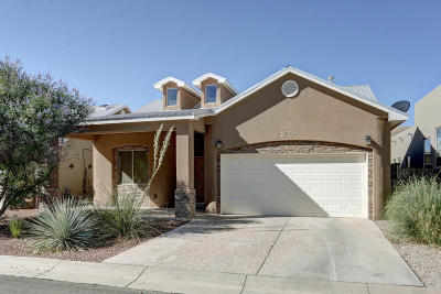 Albuquerque Single Family Home For Sale: 1836 Calle Barbarita NW