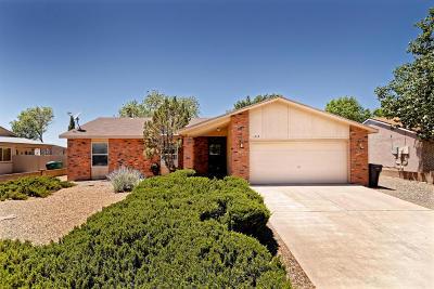 Rio Rancho Single Family Home For Sale: 1613 Salt River Court NE