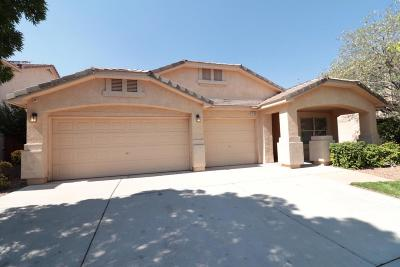rio rancho Single Family Home For Sale: 1629 Montiano Loop SE