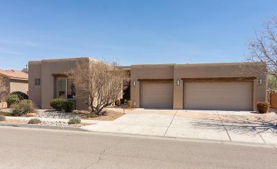 Albuquerque Single Family Home For Sale: 5009 San Adan Avenue NW