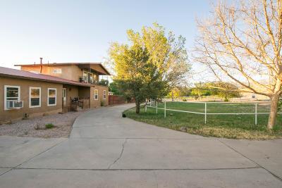 Albuquerque Single Family Home For Sale: 9207 Edith Boulevard NE