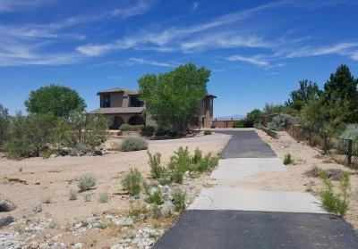 Albuquerque Single Family Home For Sale: 8905 Brock Lane NE