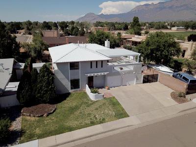 Albuquerque Single Family Home For Sale: 9701 Academy Hills Drive NE