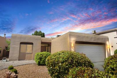 Albuquerque Single Family Home For Sale: 7019 Terrazas Road NW