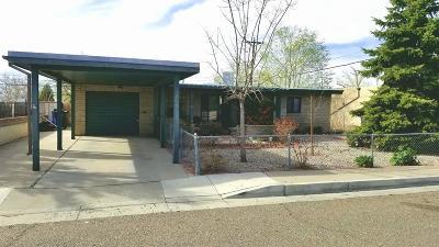 Single Family Home For Sale: 1039 Jane Street NE