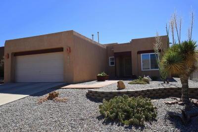 Albuquerque Single Family Home For Sale: 10904 Montecillo Drive NW