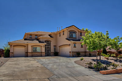 Rio Rancho Single Family Home For Sale: 1104 Coyote Bush Road NE
