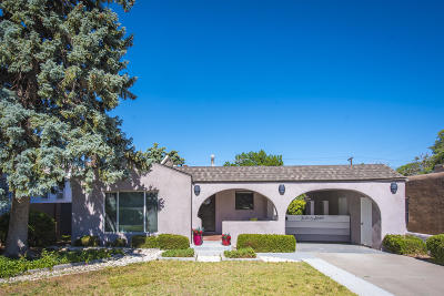 Albuquerque Single Family Home For Sale: 507 Princeton Drive SE