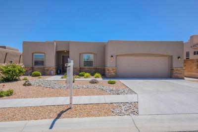 Albuquerque Single Family Home For Sale: 4612 Cayetana Place NW