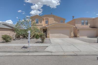Albuquerque Single Family Home For Sale: 12004 Stonebrook Avenue NW