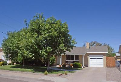 Albuquerque Single Family Home For Sale: 2805 Valencia Drive NE