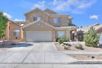 Albuquerque Single Family Home For Sale: 10617 Antler Tool Road SW