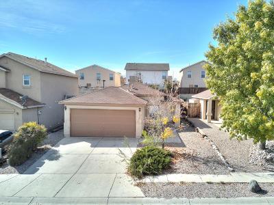 Albuquerque Single Family Home For Sale: 1325 Arroyo Hondo Street SW