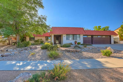 Albuquerque Single Family Home For Sale: 9211 Galaxia Way NE