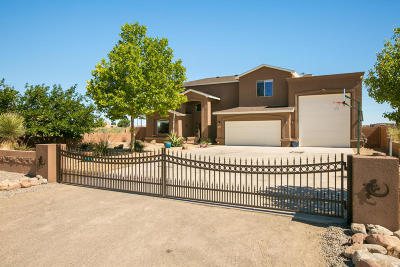 Rio Rancho NM Single Family Home For Sale: $449,000