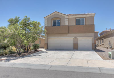 Albuquerque Single Family Home For Sale: 9105 Rio Galisteo Place NW