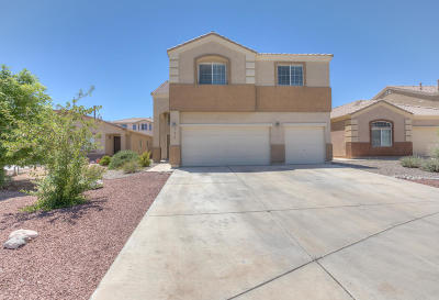 Albuquerque Single Family Home For Sale: 9015 Rio Galisteo Place NW