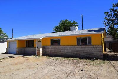 Albuquerque Single Family Home For Sale: 11721 Mocho Place NE