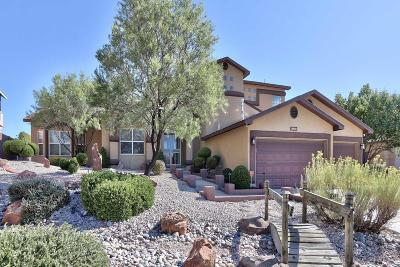Albuquerque Single Family Home For Sale: 6117 Agate Avenue NW