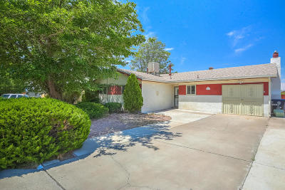 Albuquerque Single Family Home For Sale: 765 Jewel Place NE