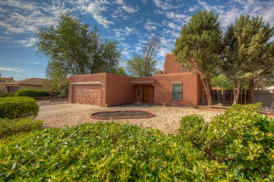 Albuquerque Single Family Home For Sale: 4812 Sundance Trail NW