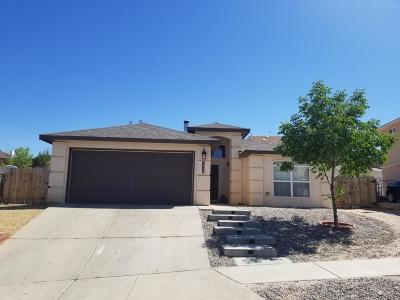 Albuquerque Single Family Home For Sale: 10348 Rio Los Pinos Drive NW