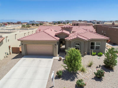 Albuquerque Single Family Home For Sale: 6348 Comfrey Road NW