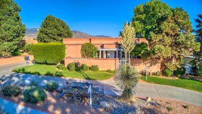 Albuquerque Single Family Home For Sale: 9508 Pebble Beach Drive NE