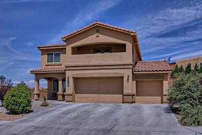 Rio Rancho Single Family Home For Sale: 1900 Las Brisas Circle SE