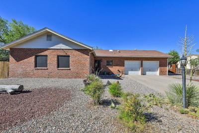 Rio Rancho Single Family Home For Sale: 4708 Pepe Ortiz Road SE