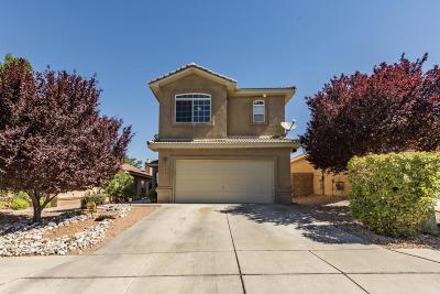 Albuquerque Single Family Home For Sale: 7219 Boxwood Avenue NE