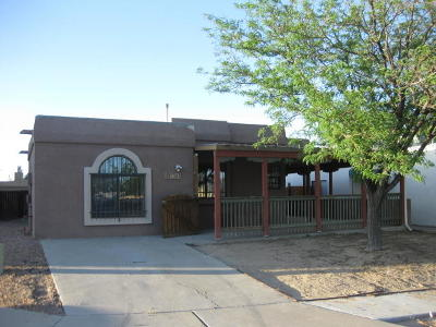 Albuquerque Single Family Home For Sale: 7323 Platero Place NW