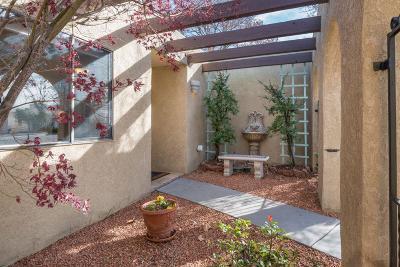 Albuquerque Single Family Home For Sale: 9709 Camino Del Sol NE