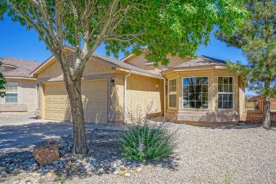 Rio Rancho Single Family Home For Sale: 3844 Tranquil Meadows Drive NE