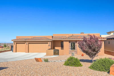 Rio Rancho Single Family Home For Sale: 2300 12th Street SE