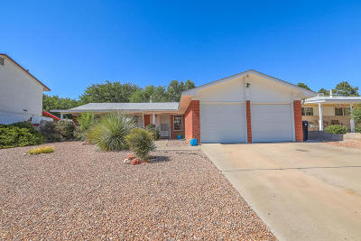 Albuquerque Single Family Home For Sale: 6321 Loftus Avenue NE