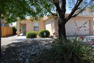 Albuquerque Single Family Home For Sale: 5204 Park Ridge Road NW