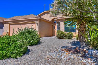 Rio Rancho Single Family Home For Sale: 3219 Colmor Meadows Circle NE
