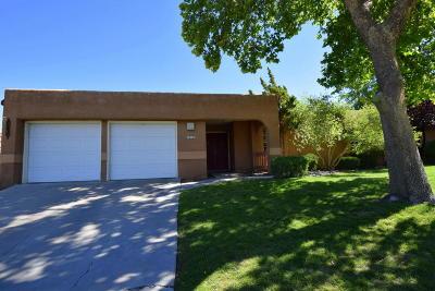 Bernalillo County Single Family Home For Sale: 705 Fennel Court SE