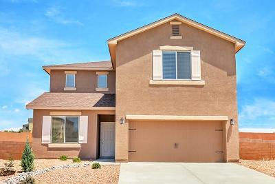 Albuquerque NM Single Family Home For Sale: $244,900
