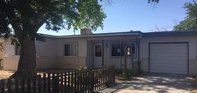 Albuquerque Single Family Home For Sale: 9000 Alvera Avenue SW