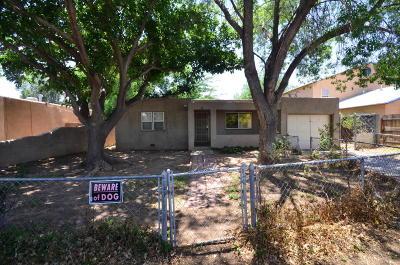 Albuquerque Single Family Home For Sale: 2440 Iris Road NW