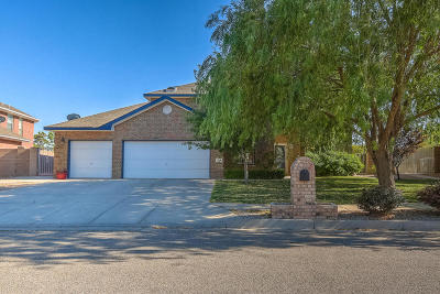 Rio Rancho Single Family Home For Sale: 2844 Island Loop SE