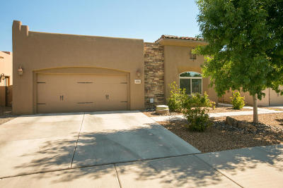 Albuquerque Single Family Home For Sale: 1305 Valle Lane NW