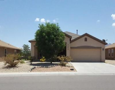 Las Cruces Single Family Home For Sale: 5884 Organ Peak Drive