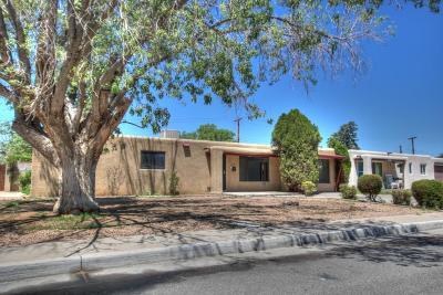 Albuquerque Single Family Home For Sale: 1621 Hendola Drive NE