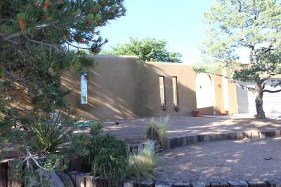 Albuquerque Single Family Home For Sale: 13717 Pruitt Drive NE